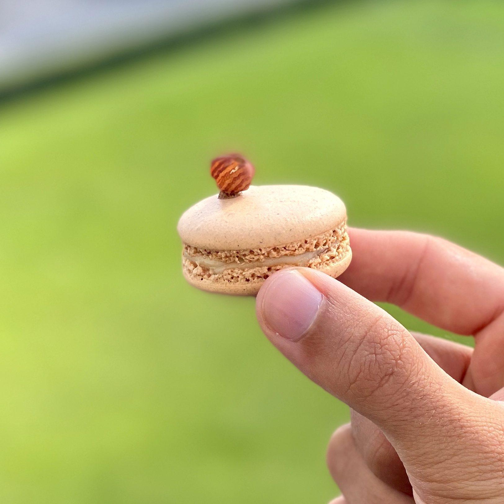 macarons_atelier_virtuel
