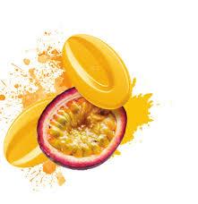 Valrhona inspiration fruits